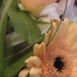 Zrzut ekranu 2015-10-06 o 23.09.35